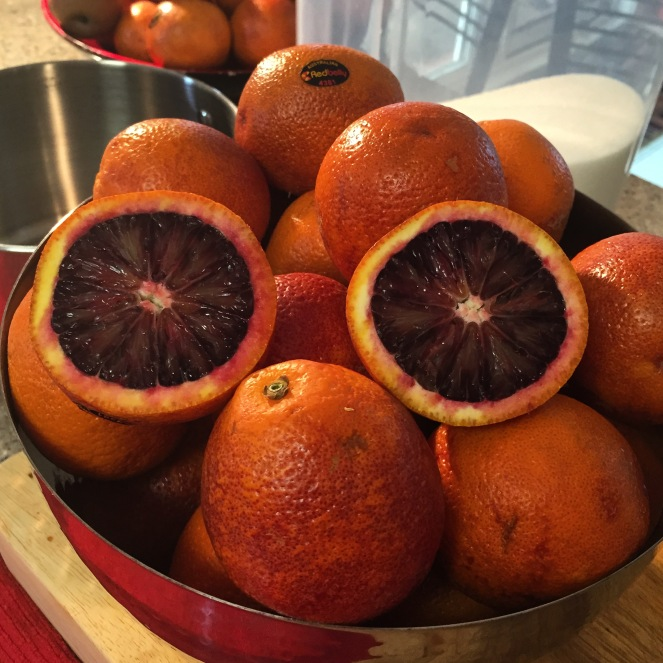 Red Belly Citrus blood oranges